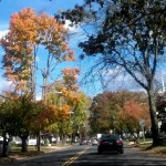Fall color in Freehold, New Jersey