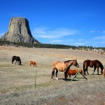 Discovering Devils Tower National Monument, Wyoming