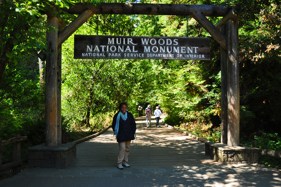 Among Ghosts and Giants: Muir Woods National Monument